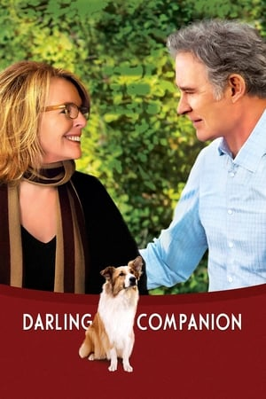 Image Darling Companion