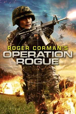 Image Operation Rogue