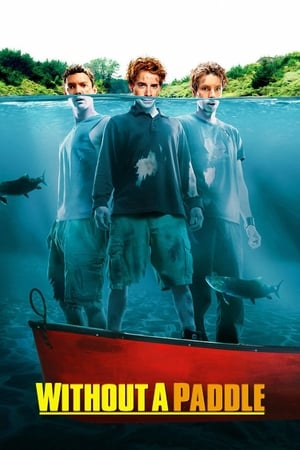 Image Without a Paddle
