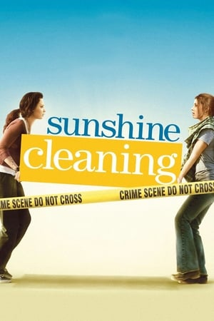 Image Sunshine Cleaning