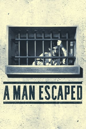 Image A Man Escaped