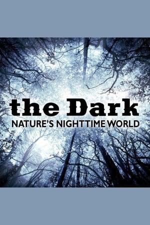 The Dark - Nature's Nighttime Worlds