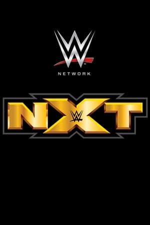 Poster WWE NXT 2010