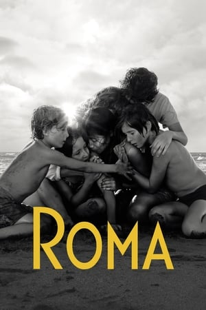 Poster Roma 2018