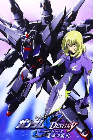 Image Mobile Suit Gundam SEED Destiny Special Edition III - Flames of Destiny