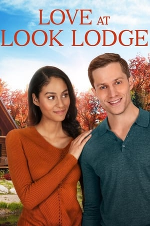 Image Falling for Look Lodge