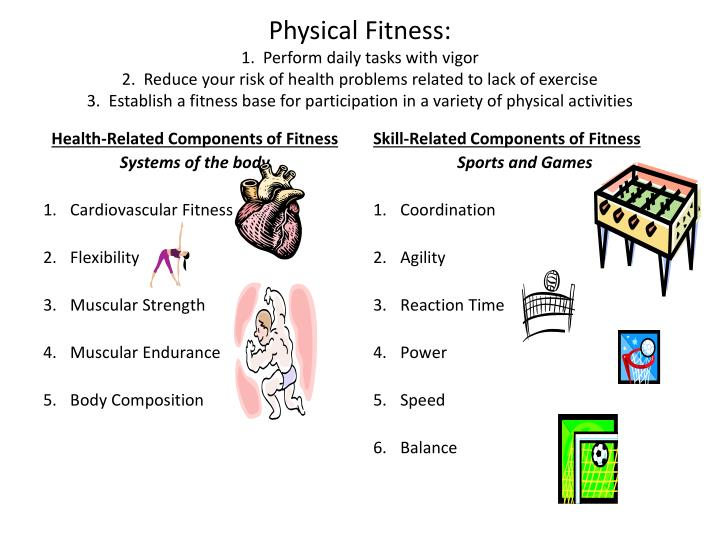 PPT - Health-Related Components of Fitness Systems of the body - components of fitness