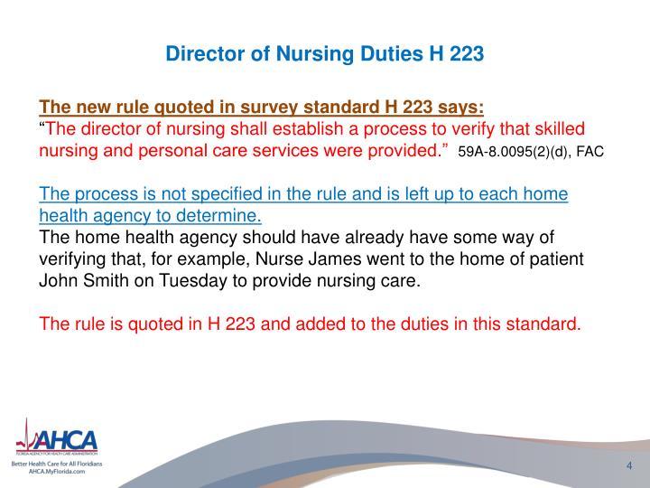 Director Of Nursing Job Description St JosephS Hospital And Health