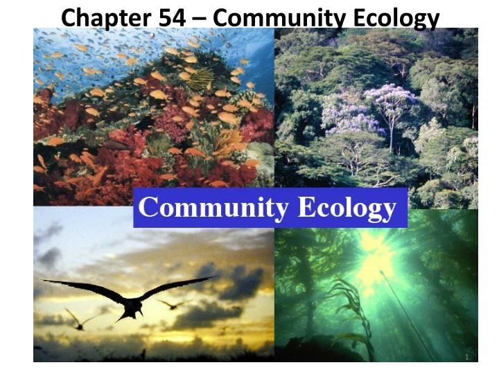 Methods In Microbial Ecology - Ppt Video Online Downloadhuman