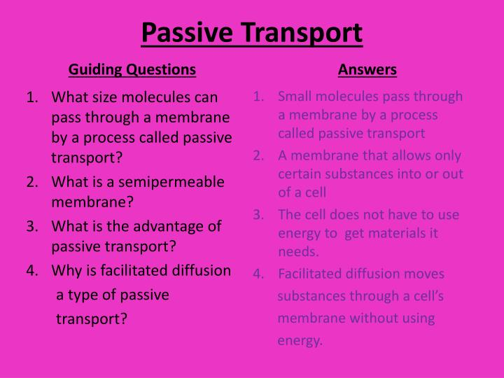 PPT - Passive Transport PowerPoint Presentation - ID2483881