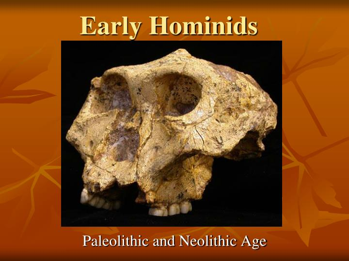 Paleolithic and neolithic era essay  Real life essay