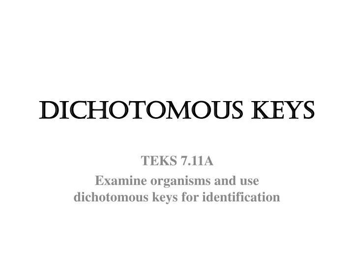 PPT - DICHOTOMOUS KEYS PowerPoint Presentation - ID2721766 - dichotomous key template word
