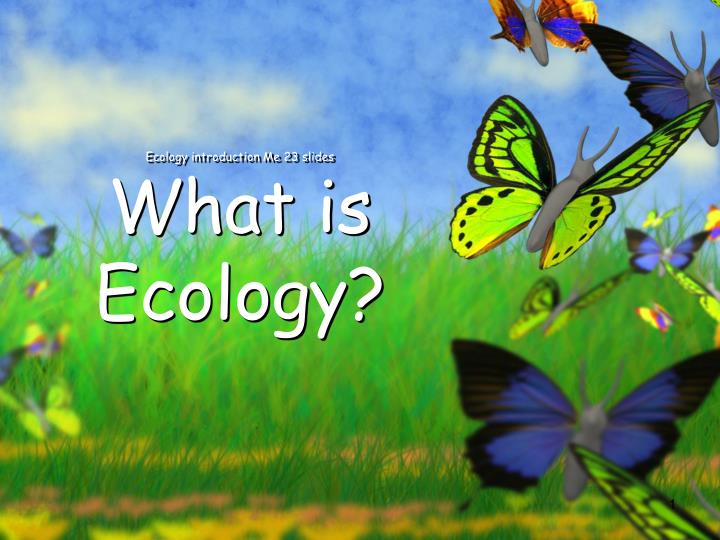PPT - Ecology introduction Me 23 slides What is Ecology? PowerPoint