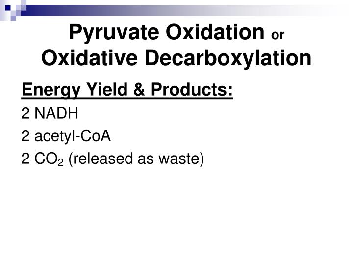 PPT - Pyruvate Oxidation or Oxidative Decarboxylation (if oxygen is