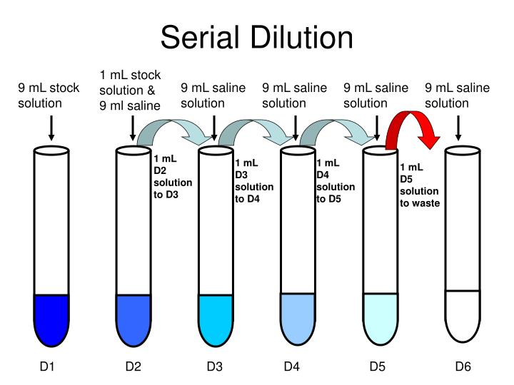 Ppt Serial Dilution Powerpoint Presentation Id3119682