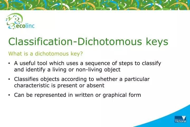 PPT - Classification-Dichotomous keys What is a dichotomous key