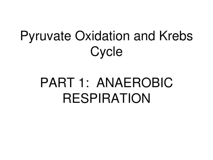 PPT - Pyruvate Oxidation and Krebs Cycle PART 1 ANAEROBIC
