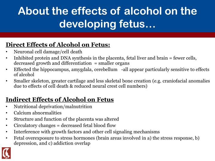 Effects of alcohol on nutrition essay Coursework Help qgessayxurc