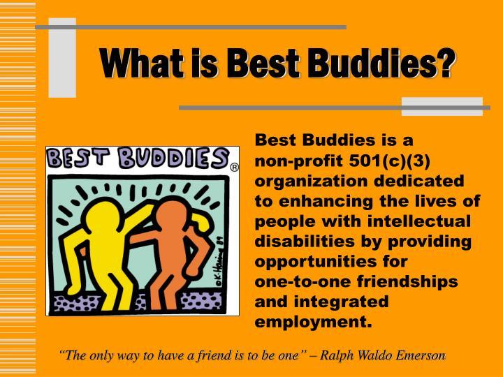 PPT - Best Buddies presents\u2026 PowerPoint Presentation - ID4815584