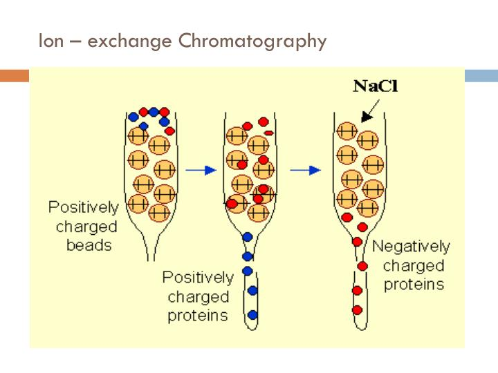 PPT - Ion exchange chromatography PowerPoint Presentation - ID5027576 - cation exchange chromatography