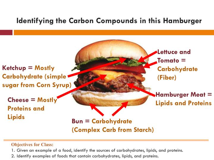 Foods That Contain Carbohydrates Proteins And Lipids Foodstutorial