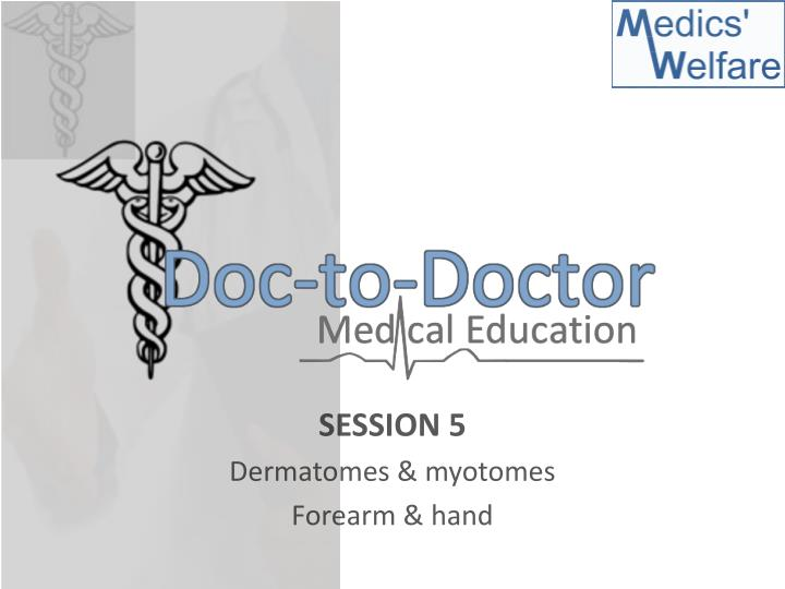 PPT - SESSION 5 Dermatomes  myotomes Forearm  hand PowerPoint