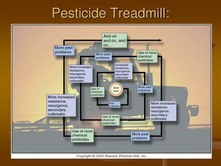 PPT - Pests  Pesticides PowerPoint Presentation - ID5664220