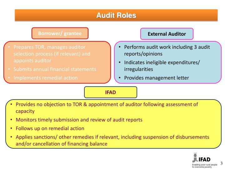 PPT - External Audit PowerPoint Presentation - ID5857791