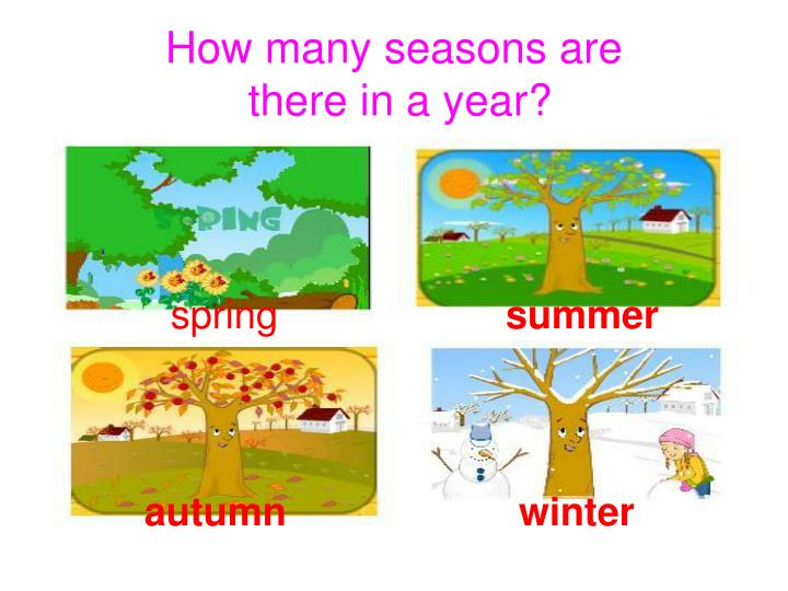 PPT - How many seasons are there in a year? PowerPoint Presentation