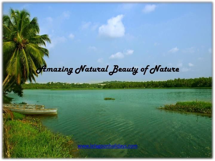 PPT - Amazing Natural Beauty of Nature PowerPoint Presentation - ID