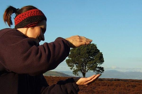 Já essa foto foi tirada em Carrot Hill, na Escócia. A mulher parece segurar um bonsai, aquelas árvores em miniatura tradicionais da cultura japonesa.