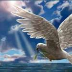 imagenes cristianas de palomas (7)