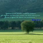 textos de la biblia imagenes (3)