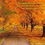 imagenes biblicas cristianas (2)