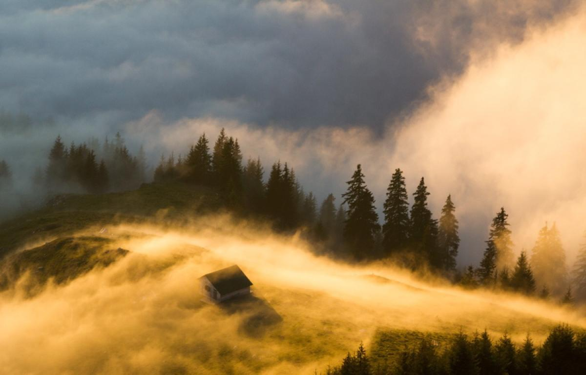 Fall Wooded Wallpaper Hora Dourada Fotografia M 225 Gica 27 Fotos Mdig