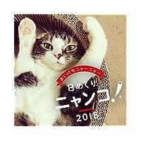 卓上 日めくりニャンコ! 2018年 猫の日めくりカレンダー