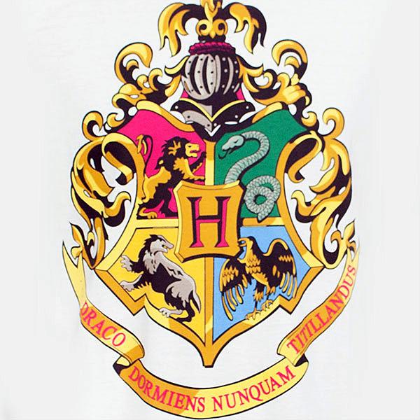 Doctor Symbol Hd Wallpaper Harry Potter Hogwarts Houses Men S Tee Shirt