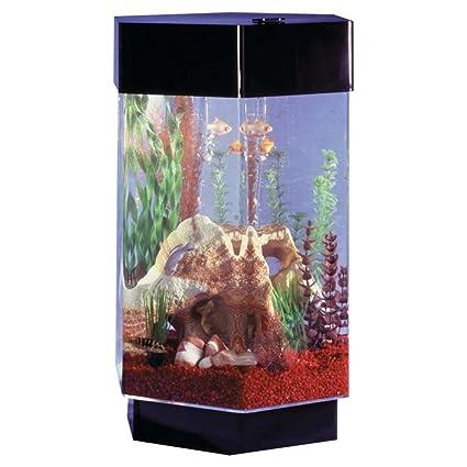 Does Aquarium Tank Width Matter?