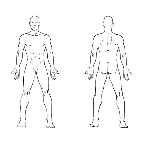 back massage diagram