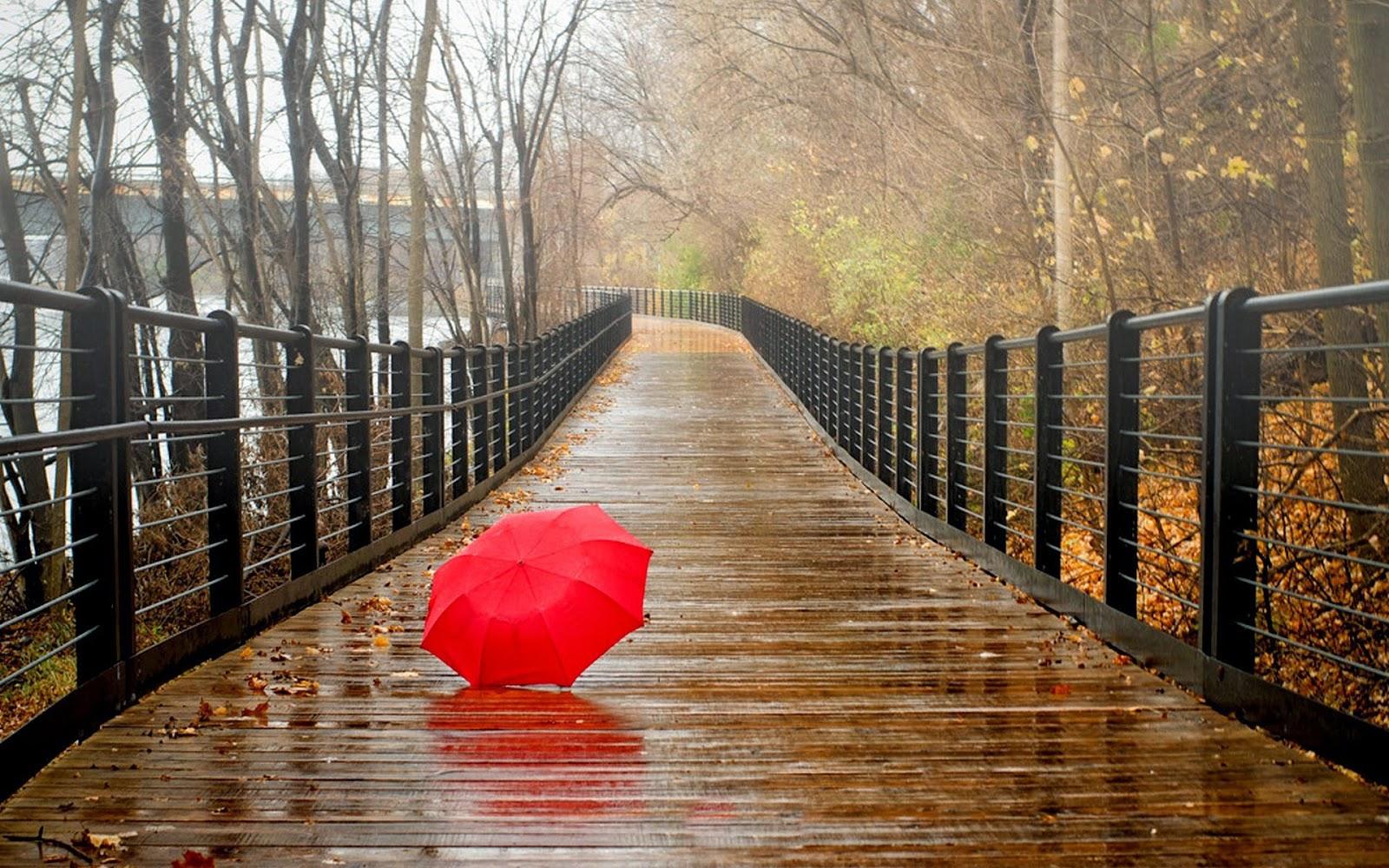 Cozy Fall Hd Wallpaper 5 000 Free Rainy Day Music Playlists 8tracks Radio