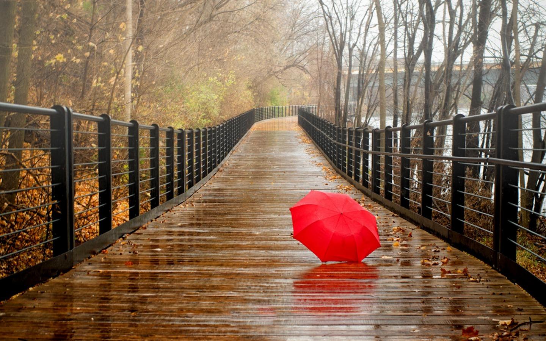 Autumn Leaves Falling Hd Wallpaper 5 000 Free Rainy Day Music Playlists 8tracks Radio