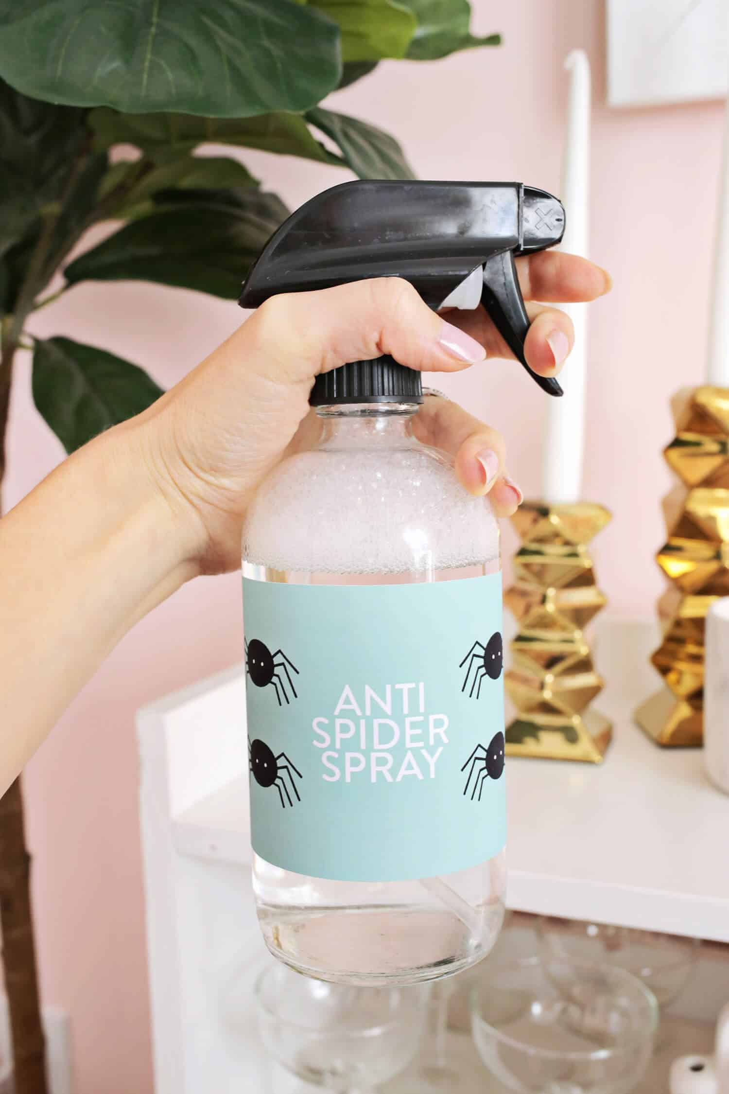 Anti Spinnen Spray Hg Anti Spider Spray Essential Oil Based A Beautiful Mess