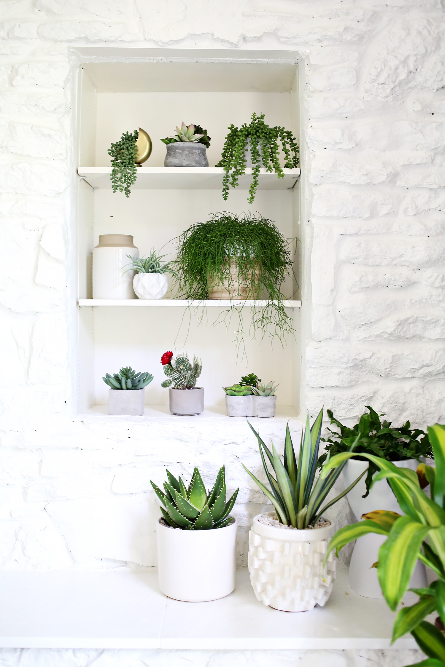 Small House Plants With Flowers Are You Faux Real How To Find The Most Convincing Faux Plants