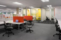 Successful Workplaces Balance Focus and Collaboration ...