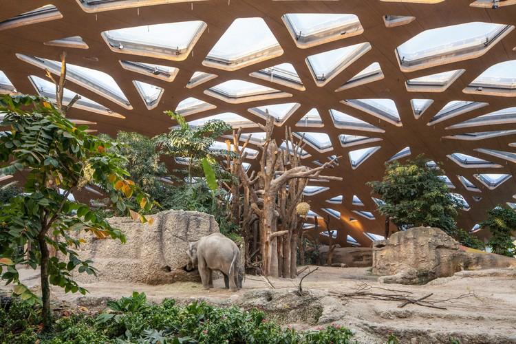 Elephant House Zoo Zurich Markus Schietsch Architekten