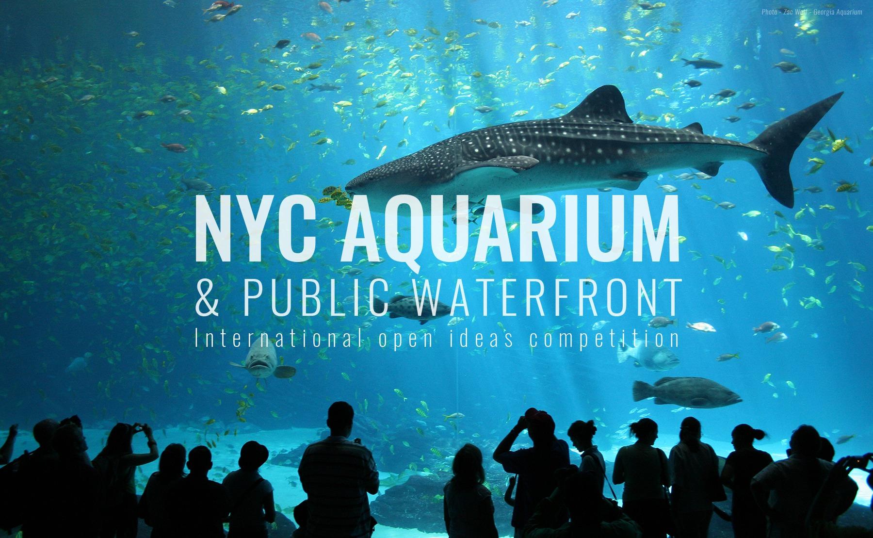 Aquarium Restaurant Nyc 1000 Aquarium Ideas