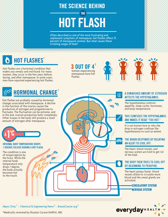 Science Behind The Hot Flash