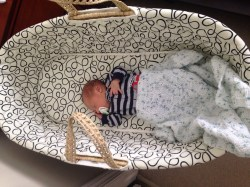 Small Of Baby Moses Basket