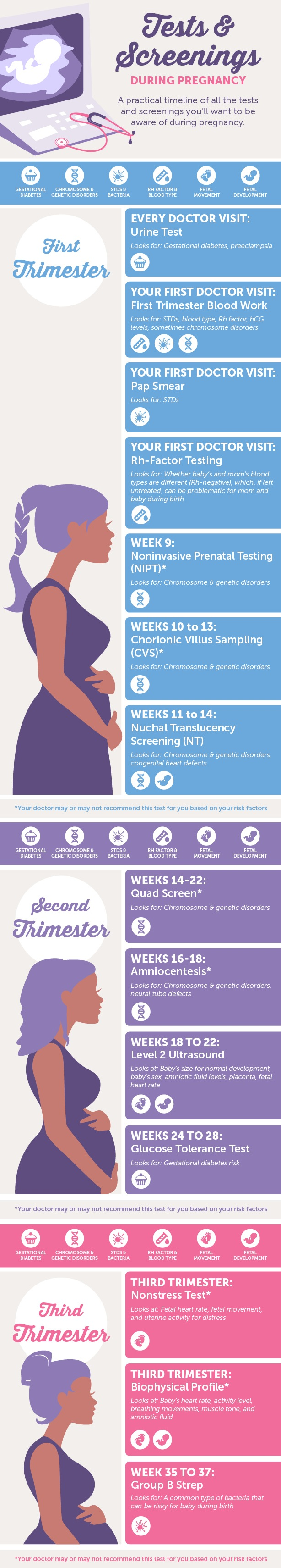 Baby Boy Strollers And Car Seats Infographic Pregnancy Tests Screenings What To Expect