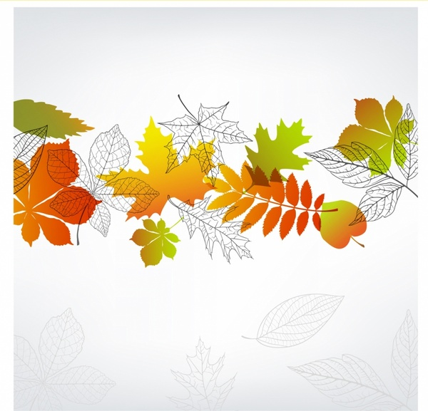 Cute Patterns For Wallpapers Autumn Leaves Border Free Vector Download 9 519 Free